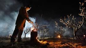 Velké Pavlovice 1.4.2020 - sadař Jan Krejčiřík zahřívá meruňkový sad ve Velkých Pavlovicích