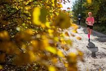 Z druhého ročníku Hájenka run v Břeclavi.