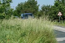 Přerostlá zeleň u cest brání motoristům i cyklistům ve výhledu. Silničáři trávu sekají a řidiče nabádají k trpělivosti.