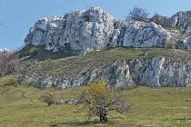 Chráněná krajinná oblast Pálava.