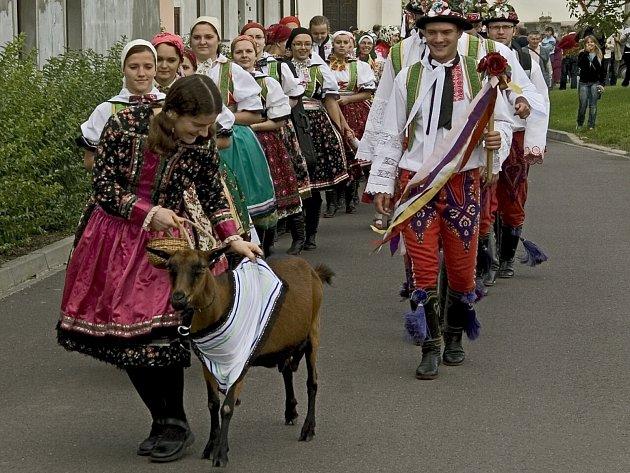 Moravsko-chorvatská komunita připravuje tradiční hody v Jevišovce. Připomenou si jejich zvyky. V průvodu půjde i koza.
