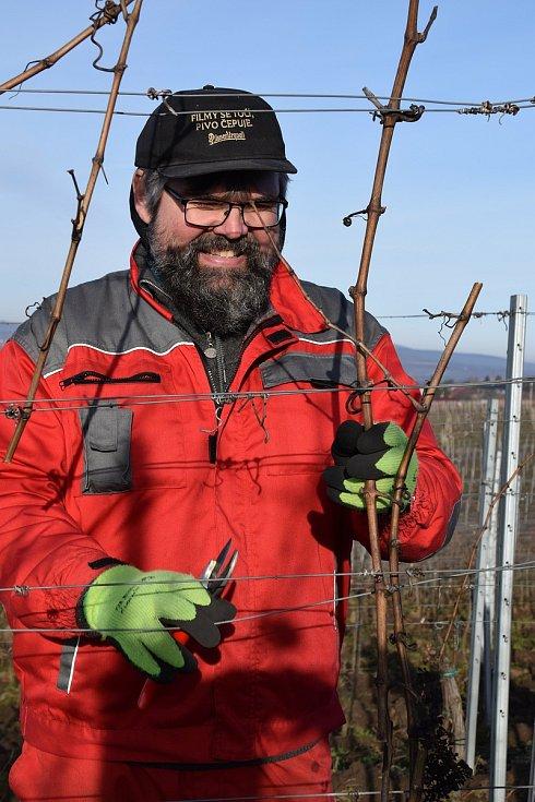 Výčepní, servírky, číšníci či kuchaři ze sítě restaurací Hospodska z Prahy a Plzně dorazili na brigádu do Valtic, kde pomáhají s prací ve vinohradech tamnímu Vinařství Obelisk.