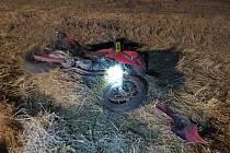 Řidič motorky a spolujezdkyně skončili po srážce se zvěří v nemocnici.
