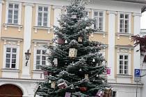 Důvodem předčasného umístění vánočního stromu byly reklamní spoty pro mobilního operátora, které přijeli do Mikulova natáčet Slováci.
