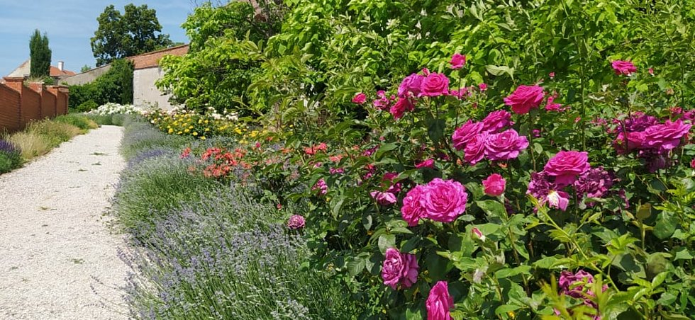 Zámecké zahrady v Mikulově jsou na počátku léta v plném květu.