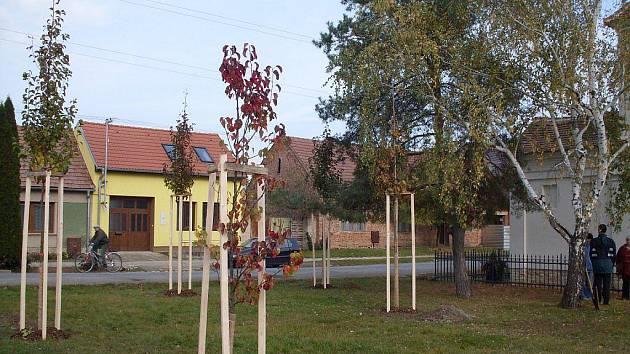 Obec Ladná.