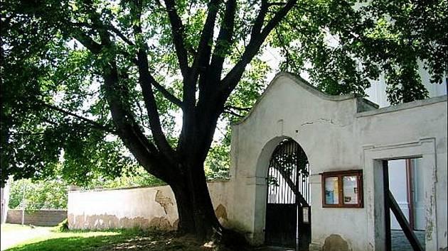 Bořetická barokní brána