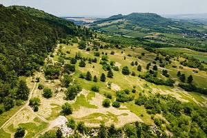 Venuše vznikla pod Pálavou po dokončení mozaikové seče v národní přírodní rezervaci Děvín.