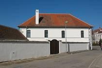 Stará radnice v Drnholci ze 16. století ukrývala dlouhou dobu vzácnou fresku s motivem révy vinné. Vedení městyse ji nechalo za téměř 300 tisíc zrastaurovat.