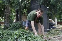 Břeclavští skauti v neděli pracovali na zvelebení židovského hřbitova v okresním městě.