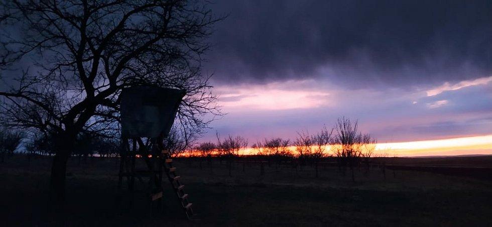 Podvečerní pochůzka po okolí Bořetic nabízí krásné panoramatické výjevy.