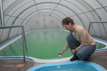 Bazén s termální vodou v rekreačním zařízení Turist v Pasohlávkách.