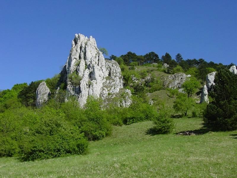 Vápencový skalní útvar na Pálavě.