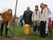 V Lanžhotě zasadili památnou lípu.