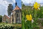 Zámecká zahrada a park Oslavany na Brněnsku (vlevo) a Křížový vrch vHustopečích na Břeclavsku.