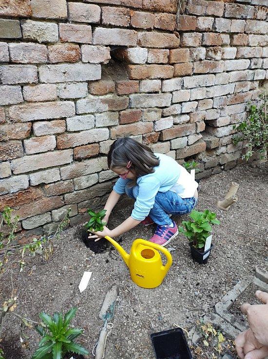 Boleradičtí školáci se zapojili do projektu Voda v zahradě.