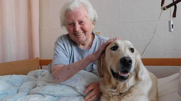 Penzistům v břeclavském domově důchodců zpříjemňuje dny kontakt se zvířaty.