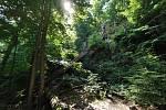 Z výletu do Nových Zámků v Litovelském Pomoraví. od Třesínem nedaleko Mladče. Divoká přírodní scenérie, tohle mám moc rád.