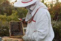 Lukáš Konečný z Přítluk před lety propadl včelaření. Zapojil do něj celou rodinu včetně dvou dětí.