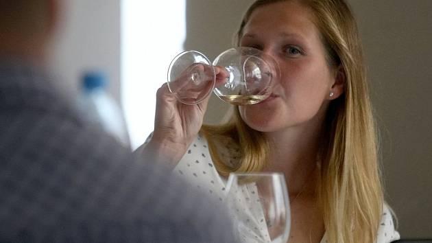 Za vínem i folklorem se vydají zájemci do Kyjova