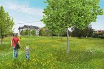 Atraktivnější pro obyvatele je plocha podél koryta Šumického potoka poblíž lokality Bývalá kasárna v Pohořelicích. Zdroj: město Pohořelice