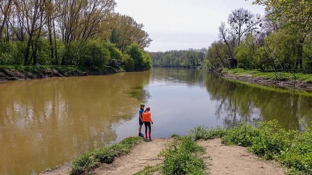 Z výletu k soutoku Dyje s Moravou. Soutok. Vpravo Dyje, vlevo Morava, která Dyji přebírá. Společně po necelých 70 kilometrech dotečou do Dunaje a pak do Černého moře. Zároveň je to místo na hranici tří států. Děti stojí v Česku. Vpravo (na dyjském břehu)
