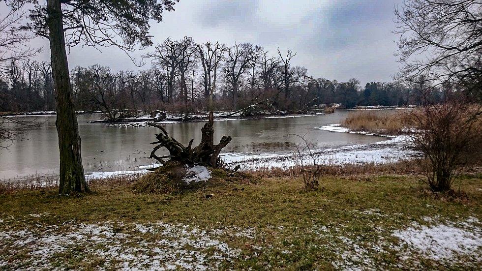 Ze zimní procházky lednickým parkem.