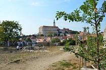 Mikulov nově láká do panonského háje pod Olivetskou horou. Nabízí výhledy na město a okolí.