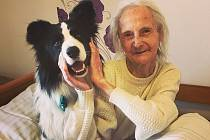 Michaela Rohrerová z Uherčic na Břeclavsku pomáhá léčit důchodce se svým speciálně vycvičeným psem (na snímku). Terapií zvanou canisterapie.