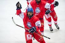 Čeští hokejisté (v červeném) porazili v úvodním zápase turnaje Švýcary 3:0.