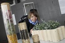 Zemědělské muzeum ve Valticích nabízí výstavu věnovanou bylinám.