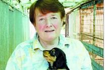 POSLÁNÍ, NE PRÁCE. Svatava Nunvářová se opuštěným psům věnuje už léta.