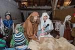 Farníci v Podivíně zaujali živým betlémem