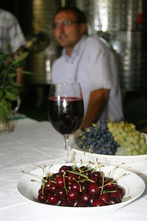 Zástupci vinařství Chateau Lednice představili višňák.