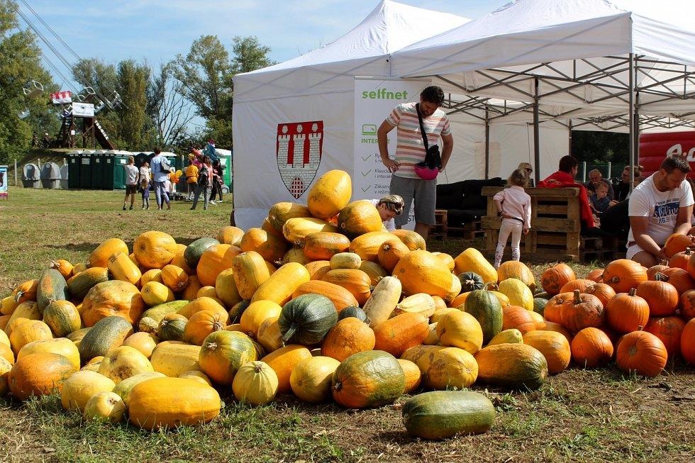 V Pohořelicích se koná v sobotu a v neděli V Poho Food Fest