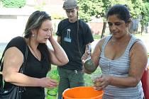 Hry pro děti, improvizovaný cirkus, grilování, fotbal. A hlavně zlepšení vztahů a vzájemné přiblížení obyvatel bydlících v břeclavské městské části Poštorná. To byl program akce Na Rovnici jsme si rovni organizované břeclavským IQ Roma servisem.