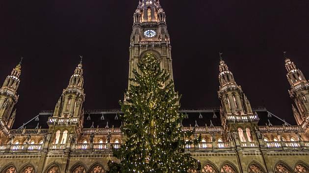 Rozsvícený vánoční strom u vídeňské radnice. Vánoční trhy začaly ve Vídni už v pátek jedenáctého listopadu.