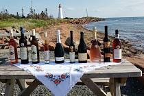 Moravské víno už je dostupné i v Kanadě.