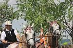 V Krumvíři pobavily v sobotu vozatajské závody.