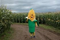 Farmáři se genetiky v zemědělství nebojí.