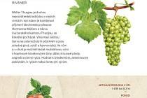 Národní vinařské centrum vydalo novou publikaci, která přiblíží známé odrůdy vín.