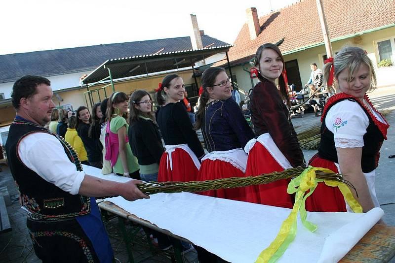 Největší žilu v České republice, tvořenou šestnácti pruty, upletlo v sobotu patnáct nadšenců z Němčiček za šest hodin a pět minut.