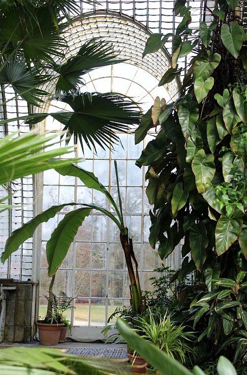 Zámecký skleník v Lednici je připravený na novou sezonu. Kvůli aktuálním omezením však zatím zůstává nepřístupný.