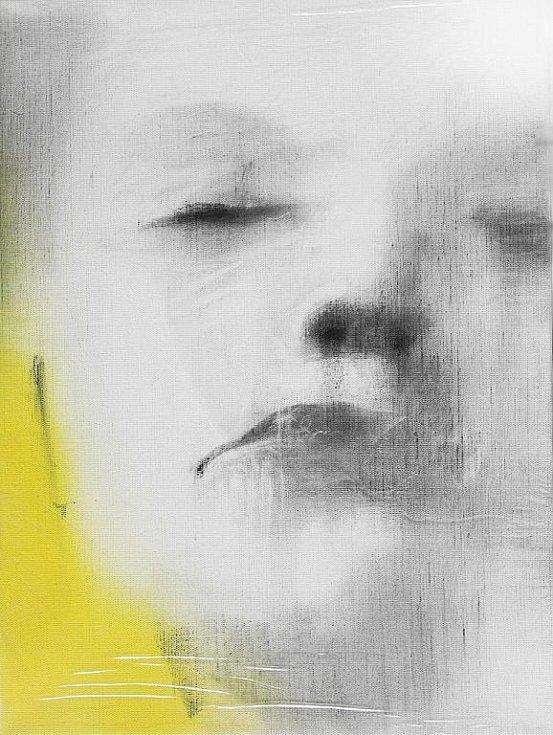 Výstava obrazů Libora Lípy.