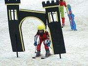 Víkend byl v Němčičkách ve znamení lyžařských závodů. V sobotu okresního přeboru ve slalomu, v neděli se jelo pro změnu finále krajského lyžařského poháru.