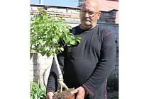 Josefu Fröhlichovi z Břeclavi zakvetla bonsaj břízy.