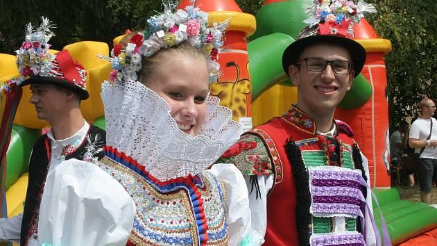 Setkání přátel jižní Moravy. Ilustrační foto.