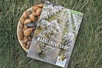 Město Hustopeče představilo upomínkové předměty letošních Slavností mandloní a vína.