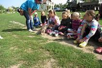 Příměstský tábor Farma, který v pondělí zahajují ve Stáji Salma je poslední prázdninová příležitost pro nejmenší děti.