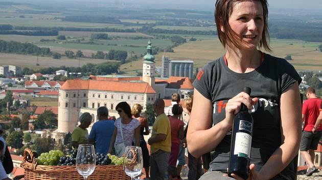 Pálavské vinobraní v Mikulově.